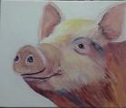 This little Piggy..