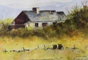 Derelict cottage, Sherkin Island